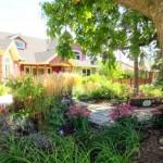 Spring Garden Care Tips