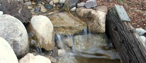 mountain stream backyard