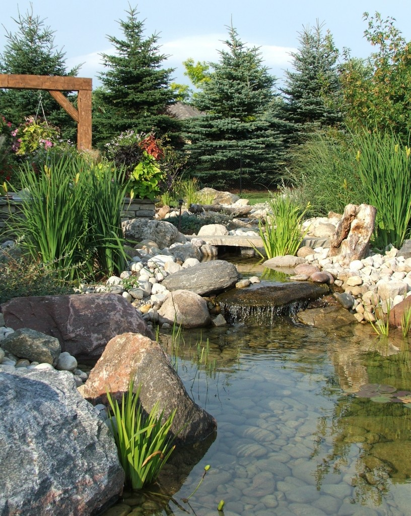 Award winning landscapes quiet nature for Artificial pond in garden