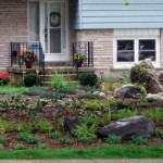 Sustainable landscape design: lawn alternatives