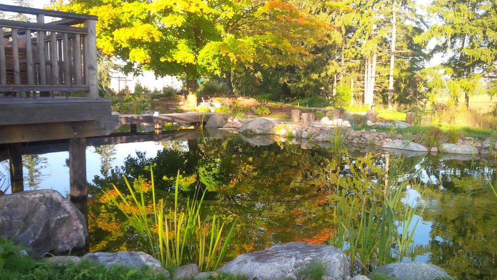 natural swimming pool ontario