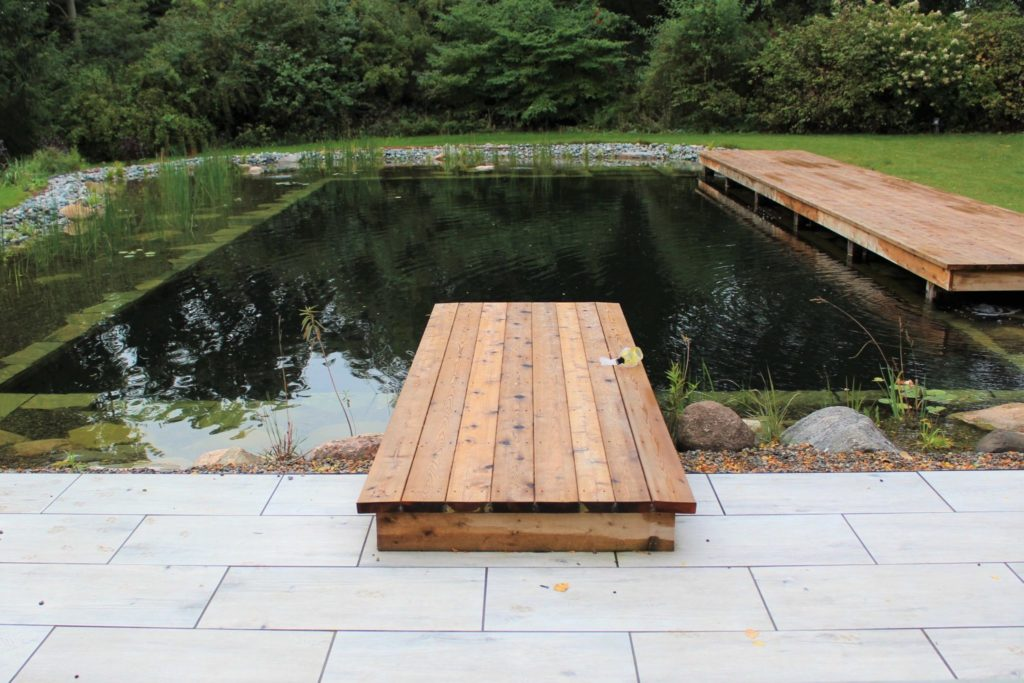 Natural swimming pool with dock and boardwalk