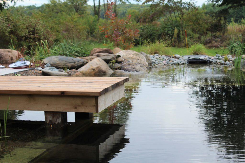 natural swimming pond dock
