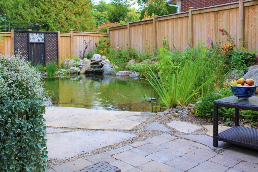 small swim pond in ontario