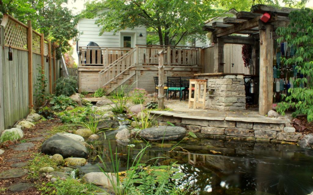 Backyard pond waterloo