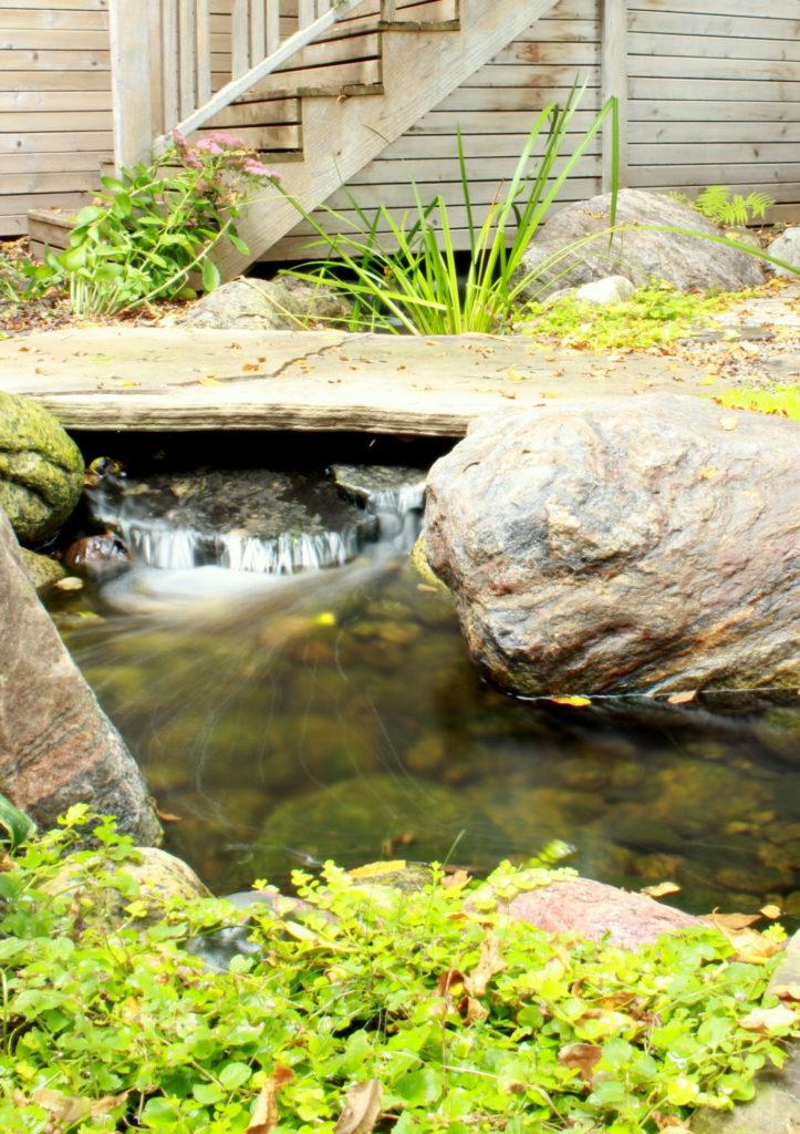 Backyard stream with bridge