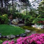 Natural Landscape Trends That Are Here to Stay