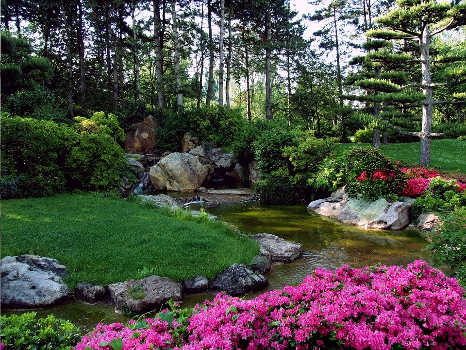 landscape garden trends cambridge